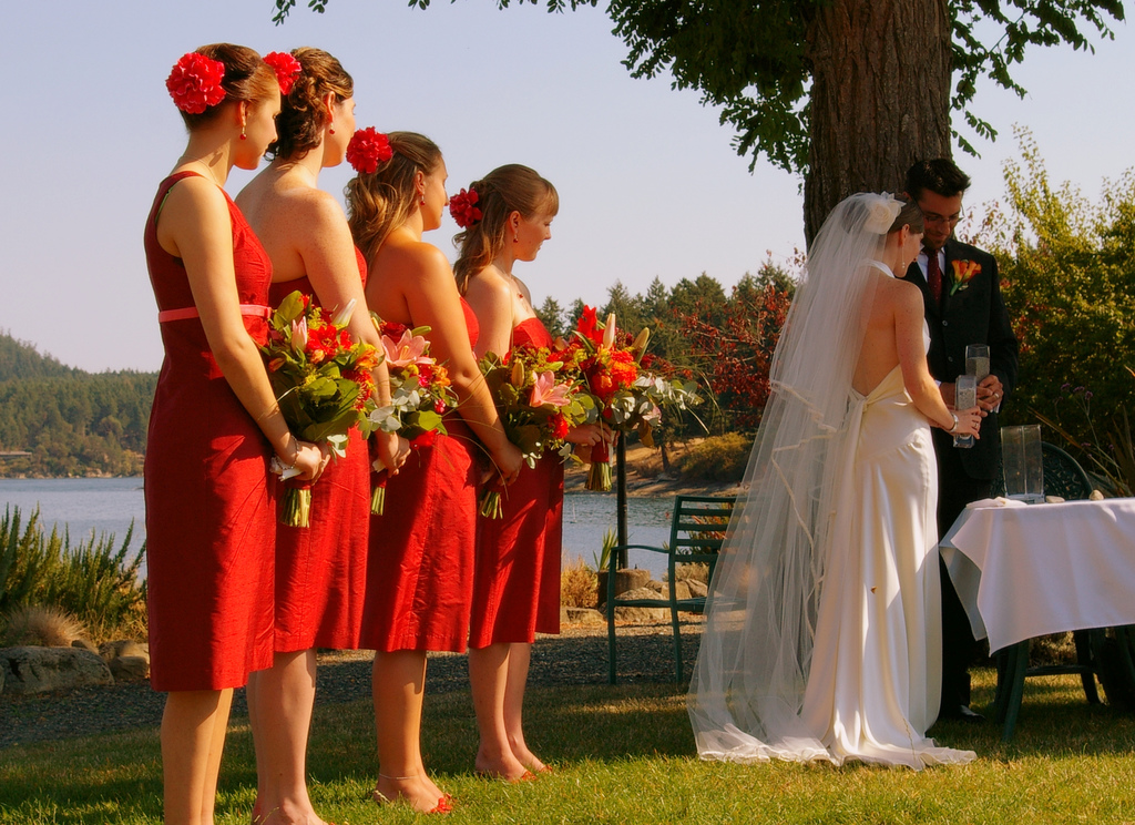 Bridemaids' dresses and beautiful gown